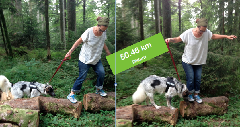 50 Kilometer geschafft!